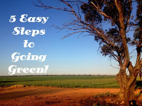 5 Easy Steps to Going Green!